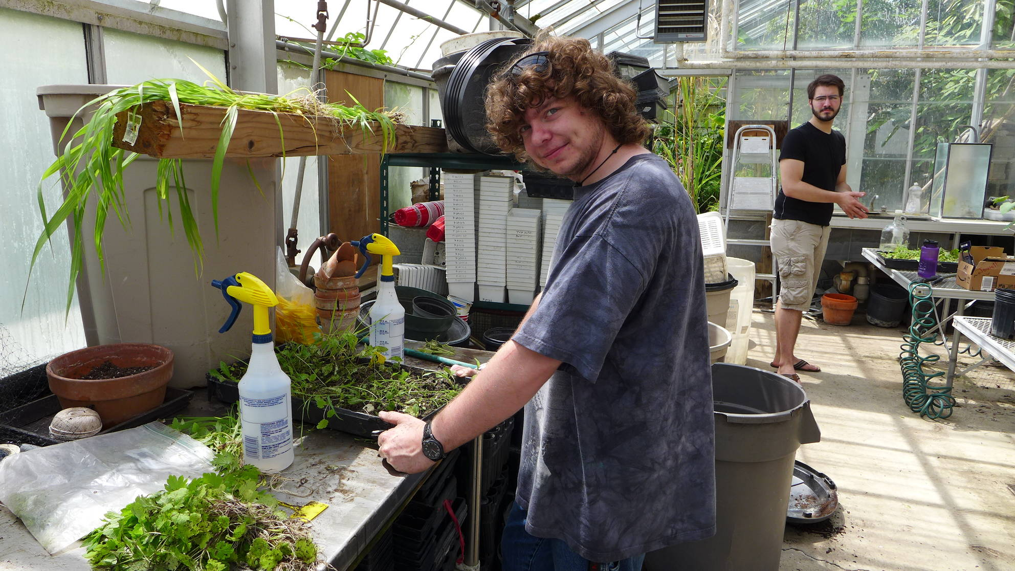 Greenhouse with student