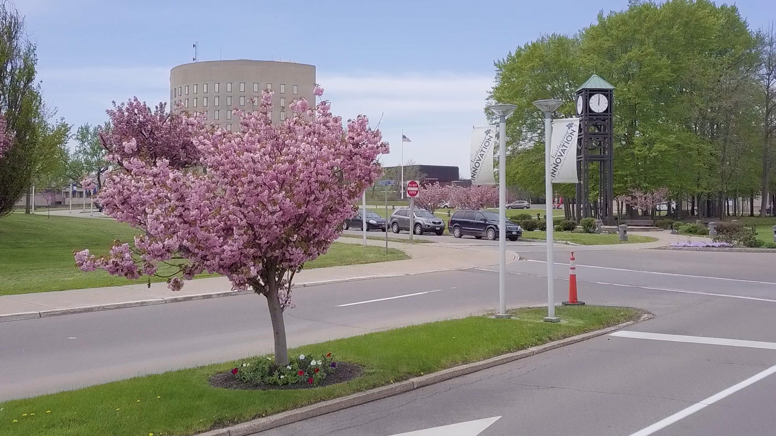 Campus entrance with cherry blossom