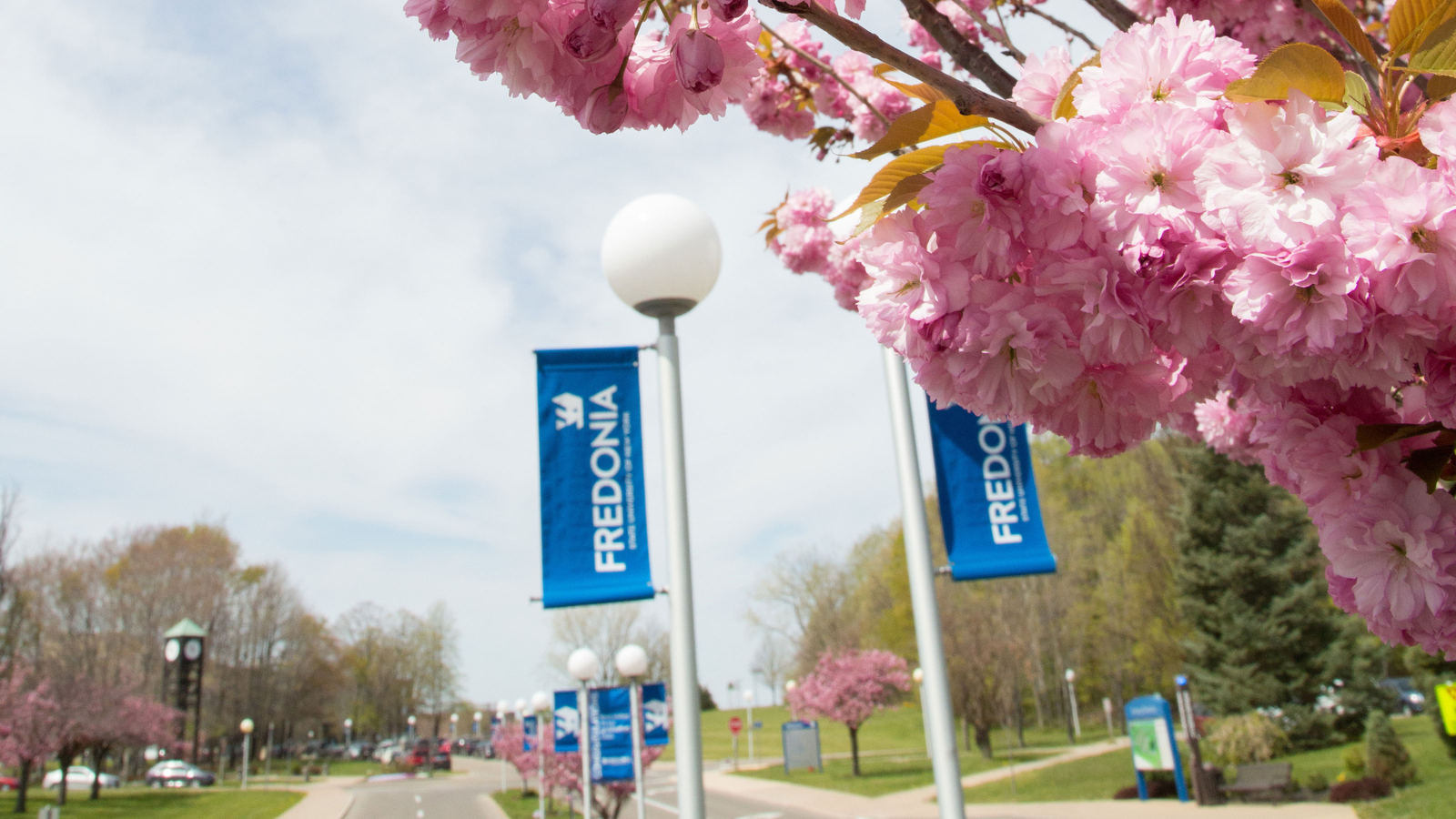 Spring time on campus.