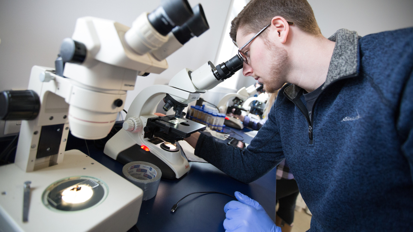 students work in a lab setting with a microscope