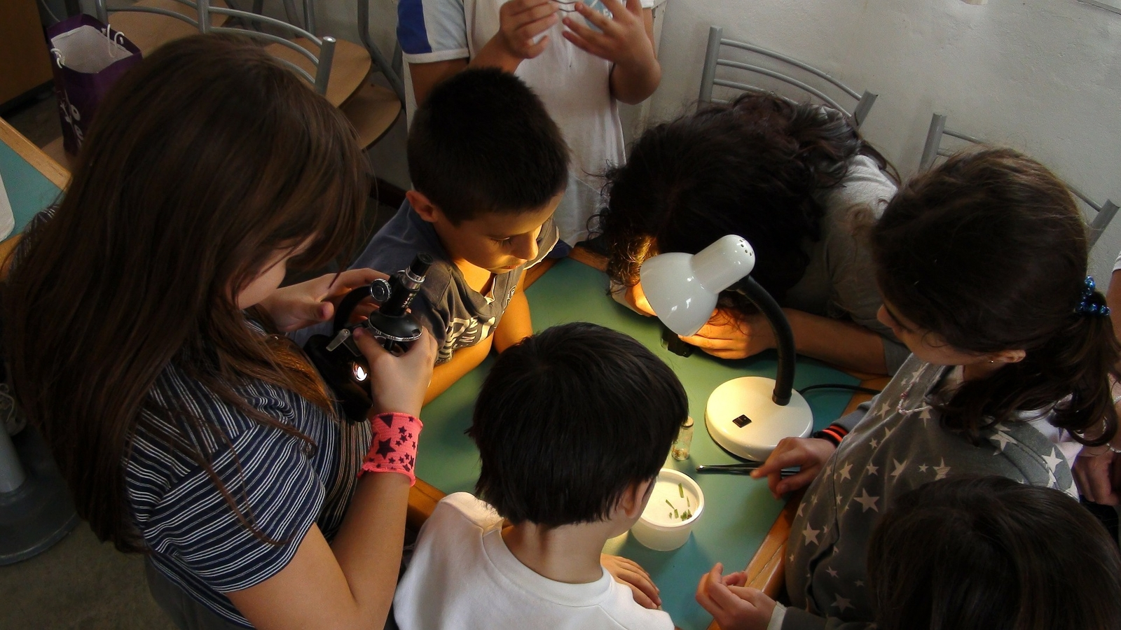 children engage in a science project in a classroom