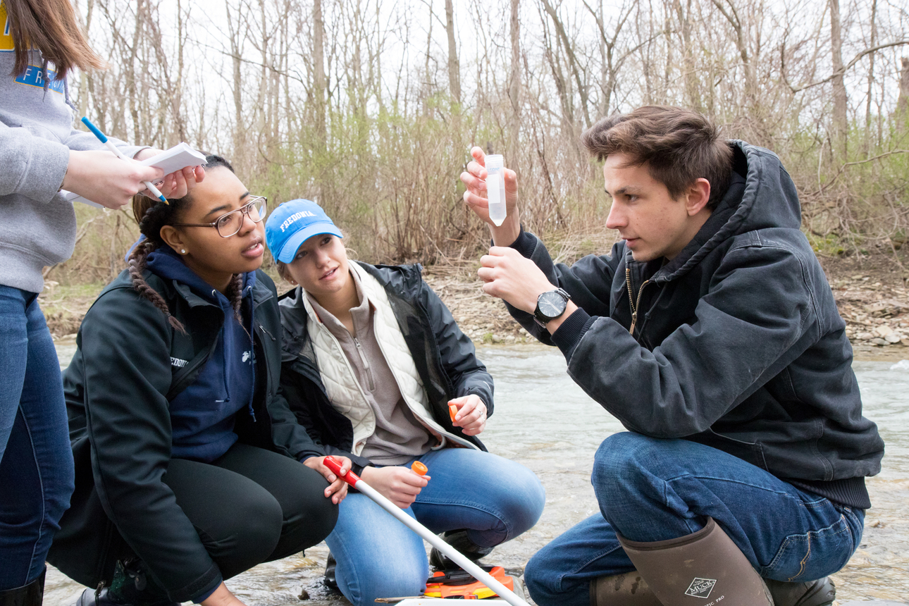 Students collect samples in Canadaway Creek for biology research.