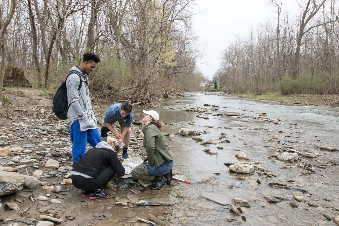 Biology students collect samples in a local creek