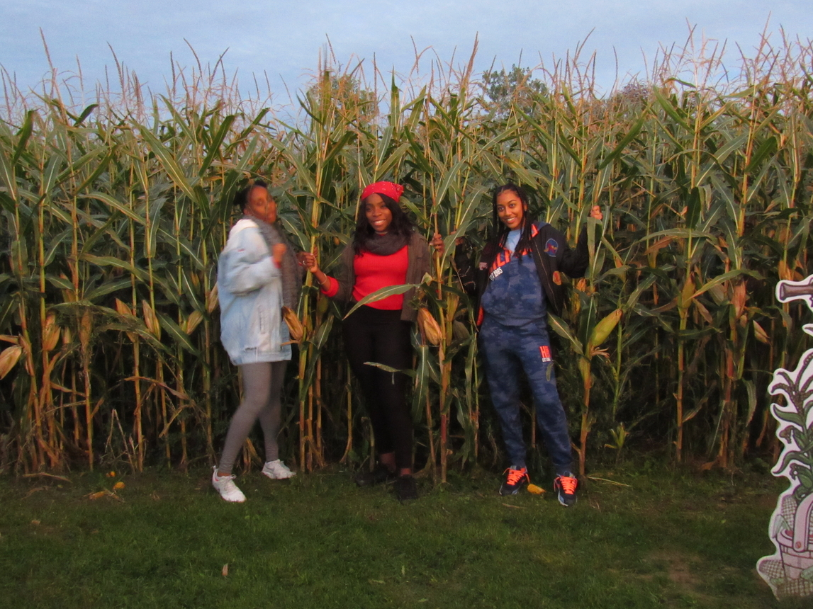 Corn Maize: Always ready for a good photo op!